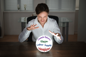 Labor Study Crystal Ball
